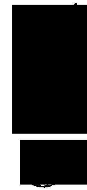 Logo-Animas-404